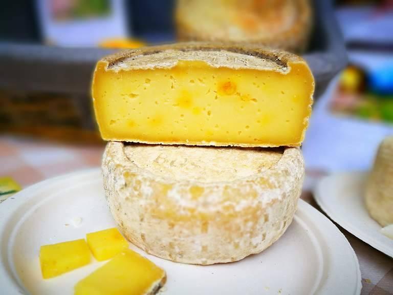 zafferano-formaggio-cpra-latte di capra-toma-biella-biellese-bio-natural bi life-organic-food-italiam- cheese