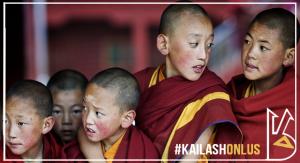 tibet-white rabbit event-donazione - kailash onlus- onlus -paypal -adozione