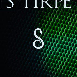 stirpe- irene belloni -esoterismo -libro esoterico -triller -mietero -serpente -simbolo -mondadori -feltrinelli -uno editori -biglino -fezia