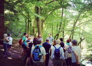 gorgomoro - biella - passeggiate - bosco -