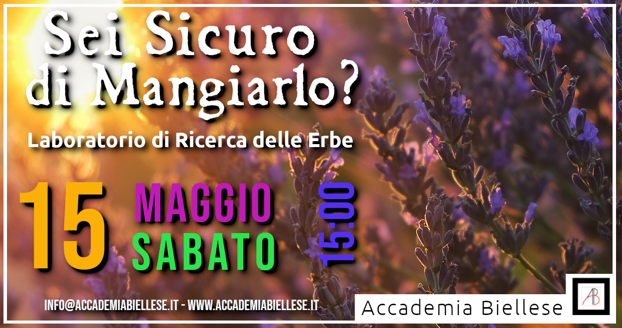 fitoalimurgia -orto -biella -erbe selavtiche -white rabbit event -accademia biellese